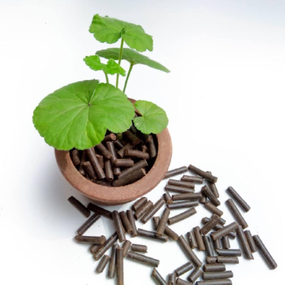 composting neem pellets