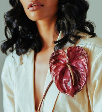 heart transplant model