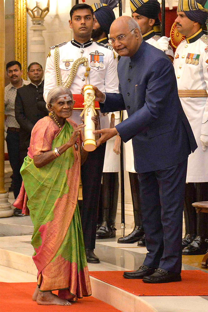 grandmother trees saalumarada thimmakka padma shri