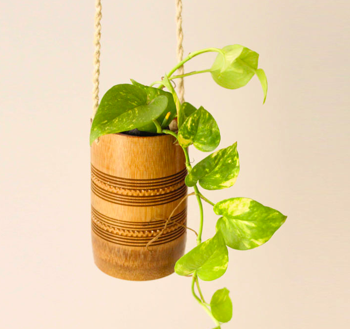 hanging planter decor ideas